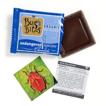 Bug Bites - Organic Milk Chocolate - DISCONTINUED BY MFR