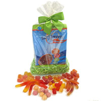 Surf Sweets Natural Gummy Candy Sampler