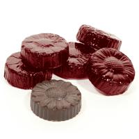 Vegan Dark Chocolate Caramel Bites